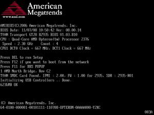 S2935 BIOS screen on boot